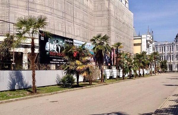 Благоустройство территории вокруг гостиничного комлекса Абхазия в городе Сухум - высаженные со стороны набережной Махаджиров пальмы - Sputnik Абхазия