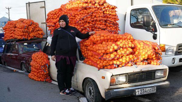 Продажа мандаринов на границе России и Абхазии в Краснодарском крае - Sputnik Аҧсны