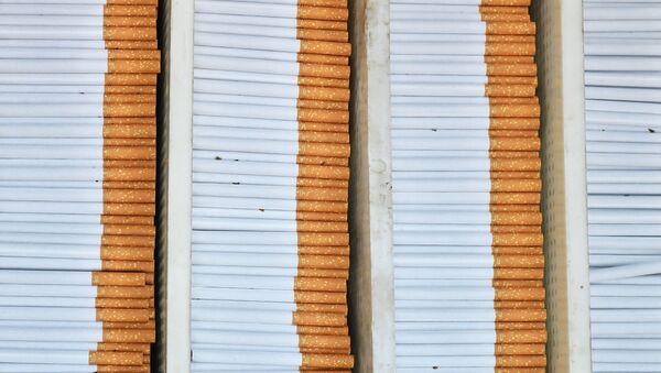 Сигатеры, архивное фото - Sputnik Абхазия