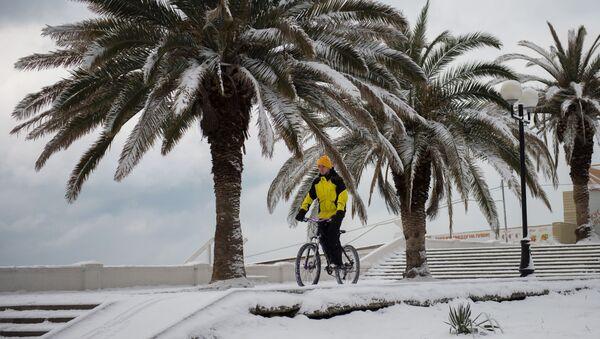 Снегопад в Сочи - Sputnik Абхазия