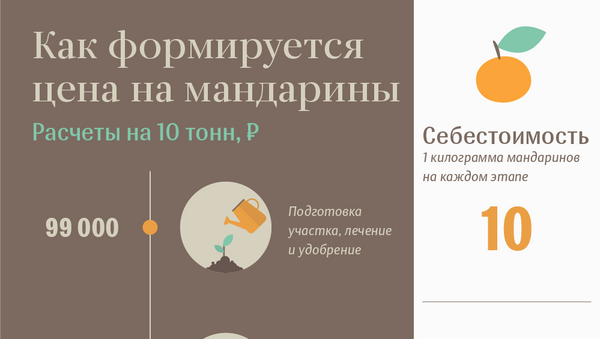 Мандарины - Sputnik Абхазия
