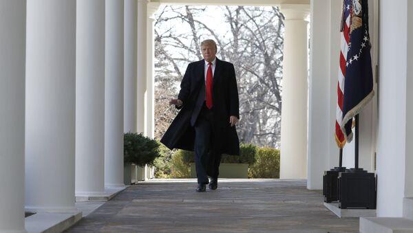 Президент Дональд Трамп в Белом доме - Sputnik Абхазия