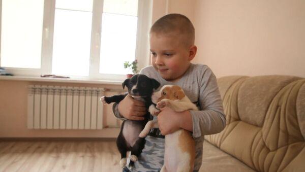 Шестилетний житель Владикавказа спасает бездомных и раненых зверей - Sputnik Абхазия