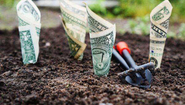 Доллары в земле - Sputnik Абхазия