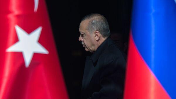 Визит президента РФ В. Путина в Турцию - Sputnik Абхазия