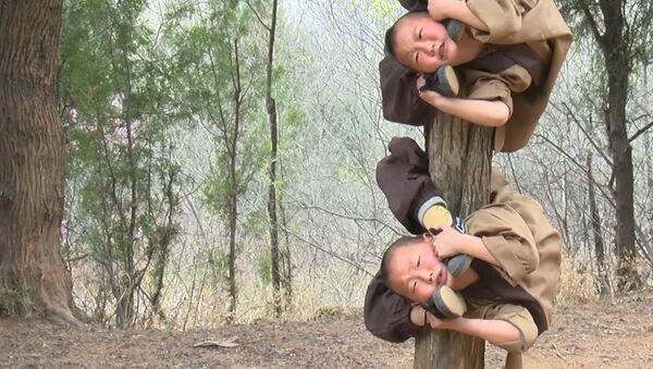 Закалка с детства: Малышей от 6 лет тренируют кунг-фу в китайском Шаолине - Sputnik Абхазия