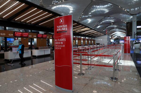 Места регистрации в новом международном аэропорту Стамбул, в Стамбуле. - Sputnik Абхазия