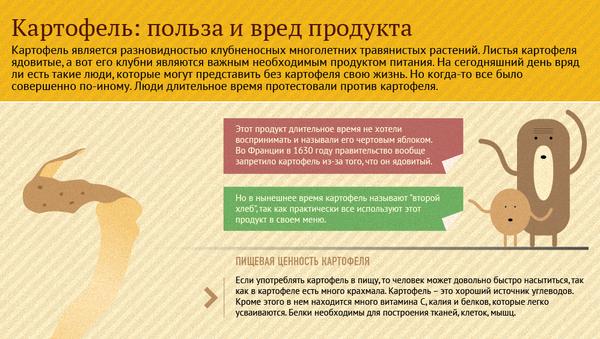 Ах, эта картошка: польза и вред привычного продукта - Sputnik Абхазия