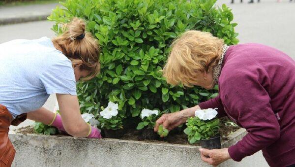Сотрудники коммунальной службы Зеленое хозяйство высаживают цветы на набережной Сухума - Sputnik Абхазия