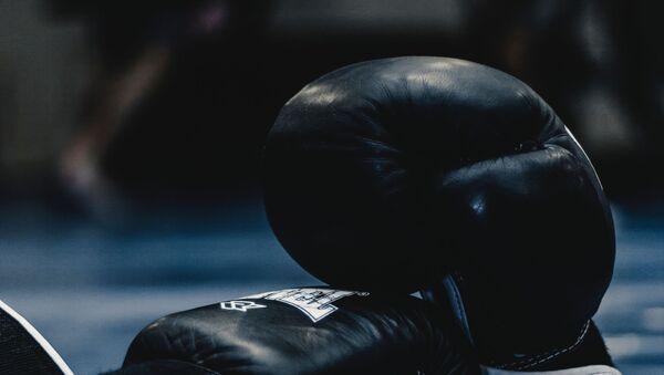 Боксерские перчатки  - Sputnik Абхазия