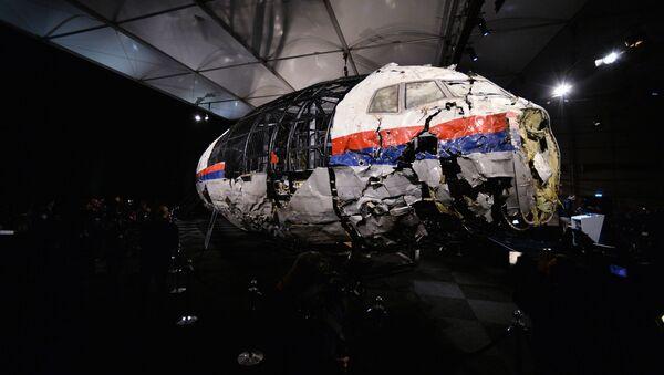 Доклад Совета безопасности Нидерландов по причинам крушения Boeing 777 - Sputnik Абхазия