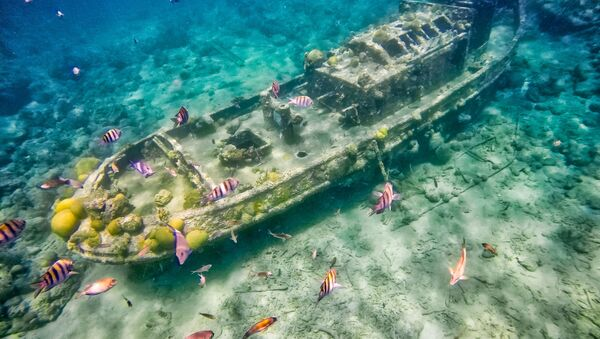 Затонувший буксир вблизи острова Кюрасао, Карибское море - Sputnik Абхазия