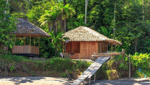 La Selva Lodge на реке Напо в Эквадре - Sputnik Абхазия