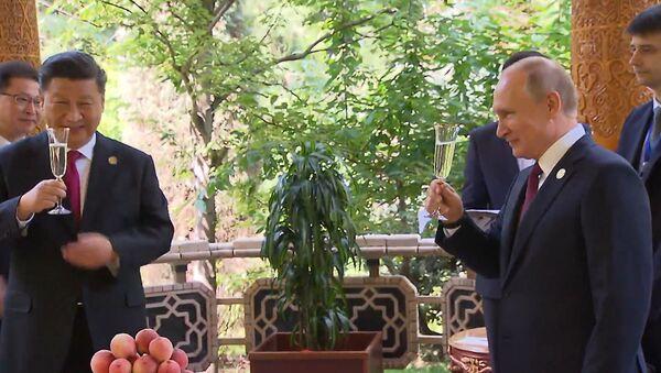 Путин поздравил Си Цзиньпина с днем рождения - Sputnik Абхазия