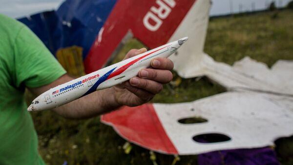 Поисковые работы на месте крушения малайзийского лайнера Boeing 777 в районе Шахтерска - Sputnik Абхазия