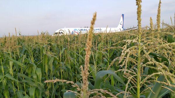 Пассажирский самолёт совершил жесткую посадку в Подмосковье  - Sputnik Абхазия