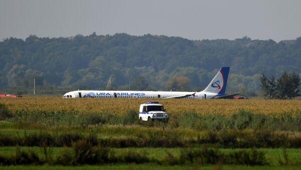 Пассажирский самолёт совершил аварийную посадку в Подмосковье - Sputnik Абхазия