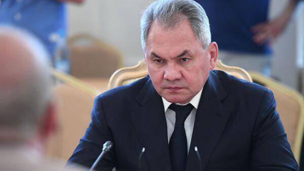 Министр обороны РФ Сергей Шойгу - Sputnik Абхазия