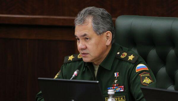 Внеочередное заседание коллегии министерства обороны РФ - Sputnik Абхазия