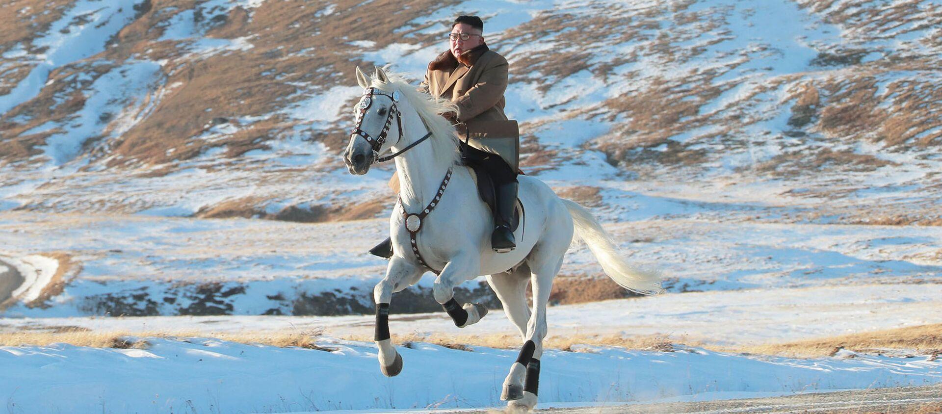 Северокорейский лидер Ким Чен Ын скачет на лошади во время снегопада на горе Паекту - Sputnik Абхазия, 1920, 16.10.2019