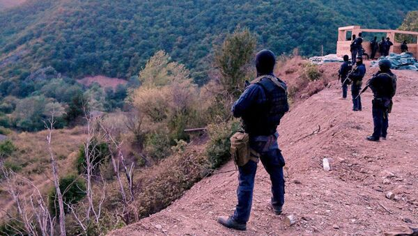 Ситуация на границы Грузии и Южной Осетии  - Sputnik Абхазия