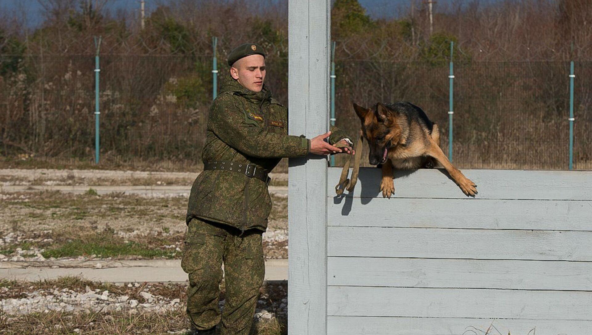 Кинологи ЮВО провели комплексную проверку функциональных навыков караульных служебных собак в Абхазии - Sputnik Аҧсны, 1920, 13.02.2021