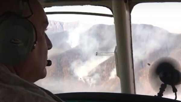 Крупный пожар в высокогорной Абхазии - Sputnik Абхазия