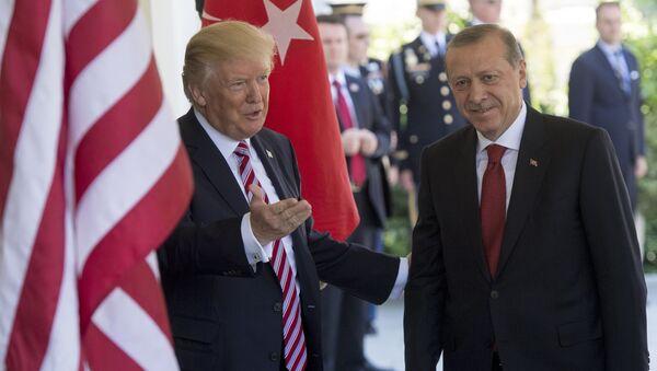 Дональд Трампи и Эрдоган - Sputnik Абхазия
