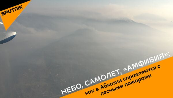 Небо, самолет, Амфибия: как в Абхазии справляются с лесными пожарами - Sputnik Абхазия