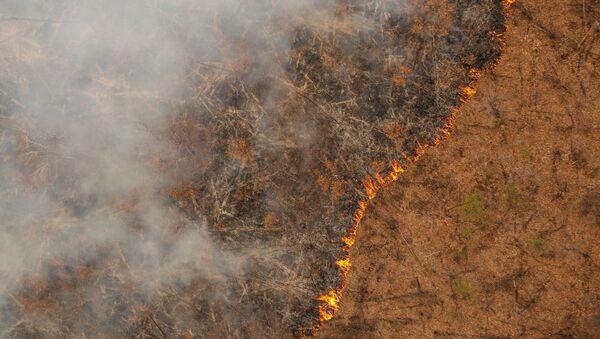 Природные пожары в Амурской области - Sputnik Аҧсны