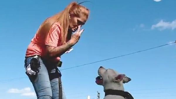 Дружелюбный Фараон: как глухой пес учится языку жестов - Sputnik Абхазия