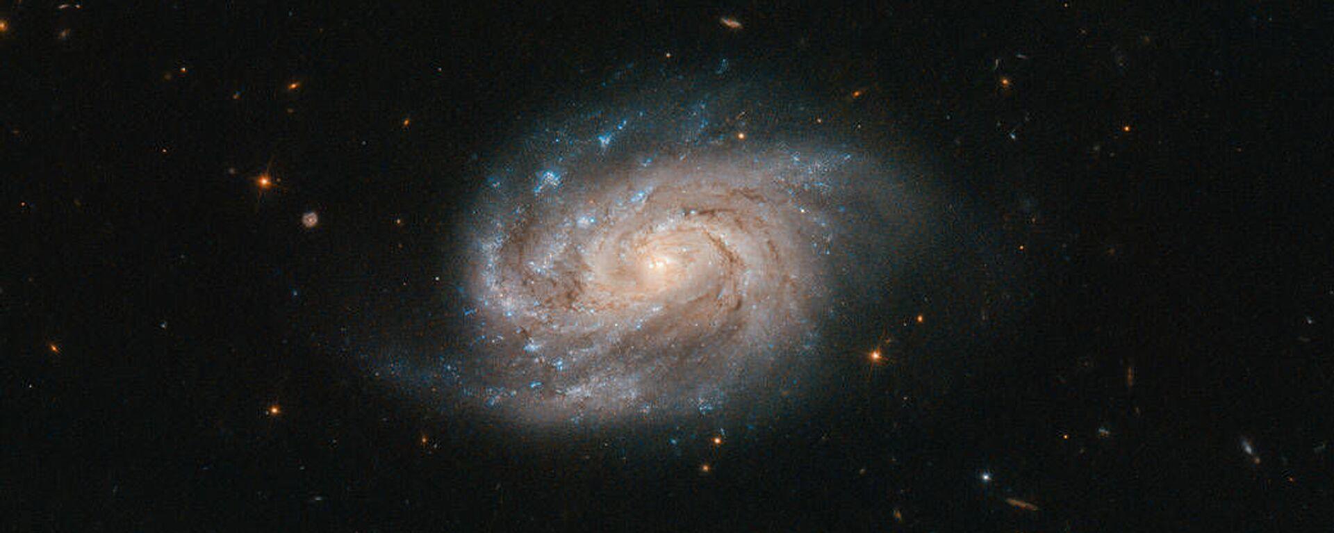 Галактика NGC 1803 в созвездии Живописец - Sputnik Абхазия, 1920, 17.02.2020