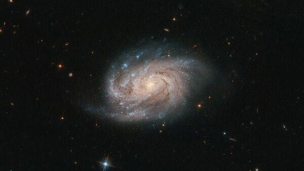 Галактика NGC 1803 в созвездии Живописец - Sputnik Абхазия