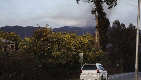 Пожар в лесу Верхняя Эшера  - Sputnik Абхазия