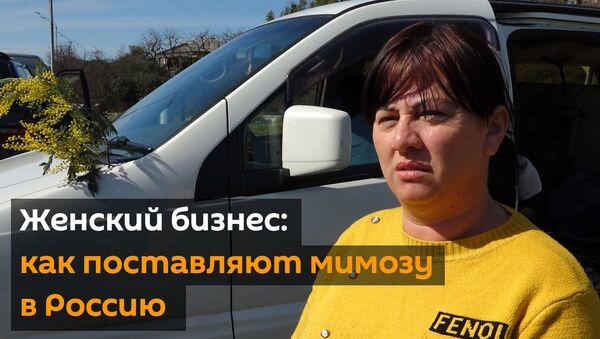 Женский бизнес: как поставляют мимозу в Россию - Sputnik Абхазия