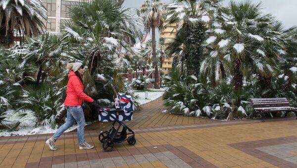 Зима в Сочи - Sputnik Абхазия