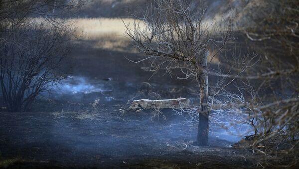 Пожар в Волгограде  - Sputnik Абхазия