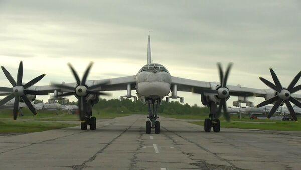 Истребители F-22 ВВС США сопроводили российские ТУ-95МС в нейтральных водах Тихого океана - Sputnik Абхазия